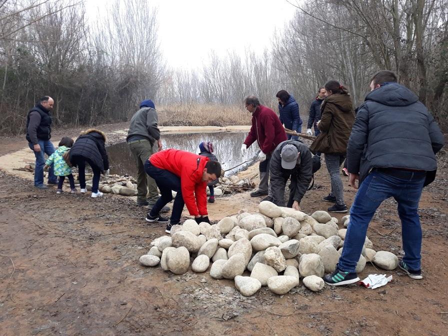 Refugis de fauna al Dia Mundial de les Zones Humides a l'Estany d'Ivars i Vila-sana